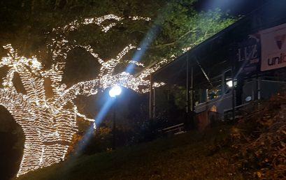 Botucatu Luz terá iluminação especial de Natal em 18 pontos da Cidade